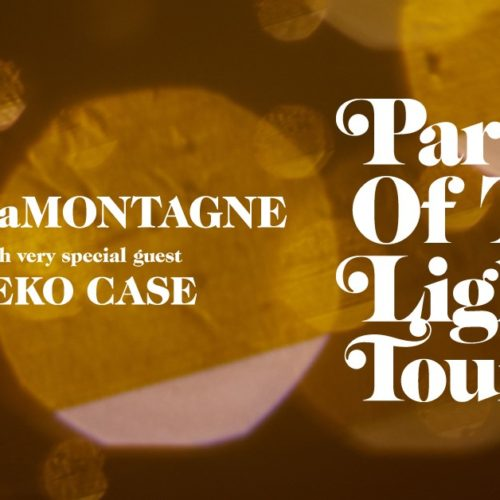 Ray LaMontange Part of the Light Tour Graphic